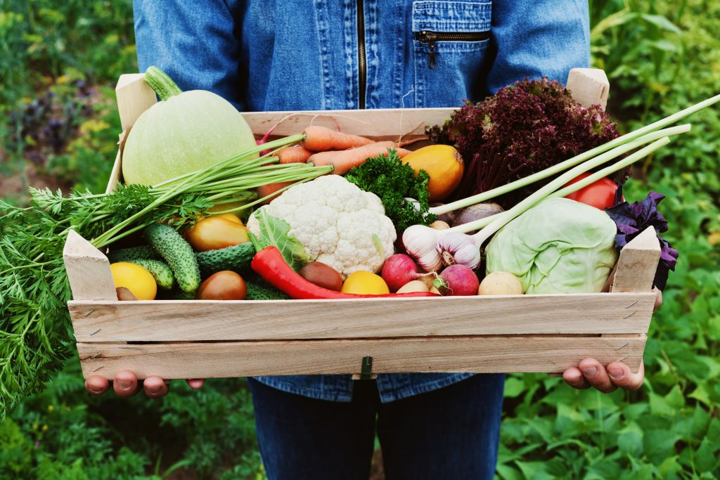Bio potraviny se vyplatí kupovat takové, které kupujete nejčastěji.