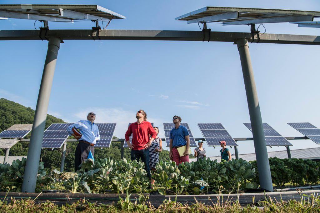 Agrivoltaika je způsob stavění panelů nad zemědělskou půdu