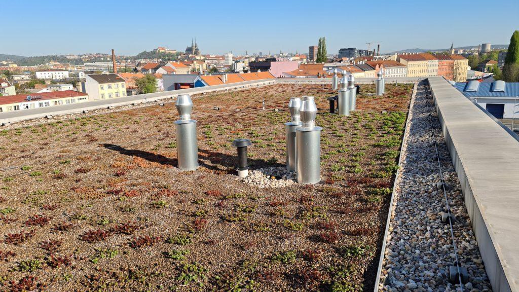 Zelená střech byla osázená extenzivní zelení.